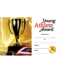 Picture Perfect Mini Awards & Certificates
